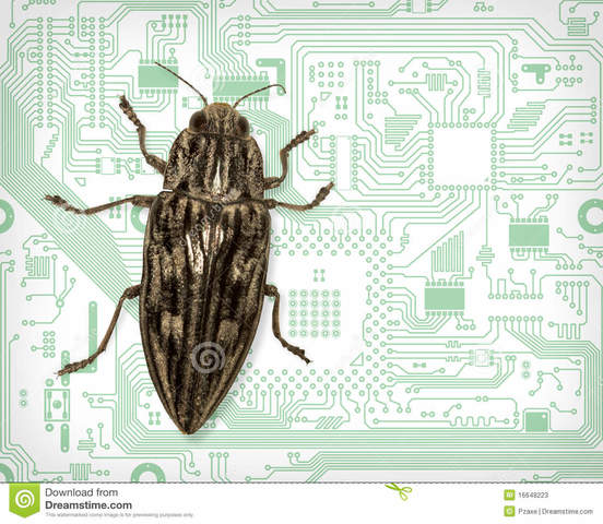 The term 'Bug' appears