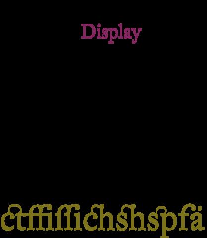 Johann Michael Fleischmann creo multitud de tipografías