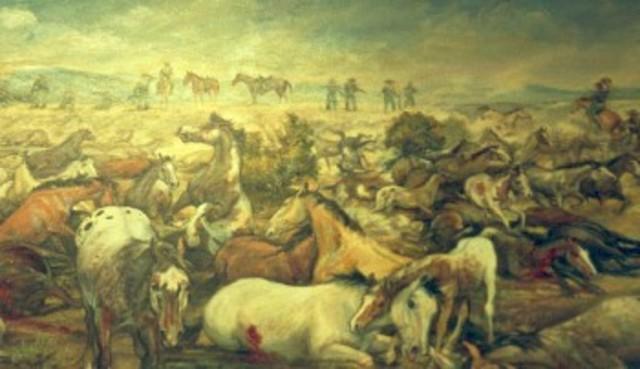 Horse Sluaghter Camp