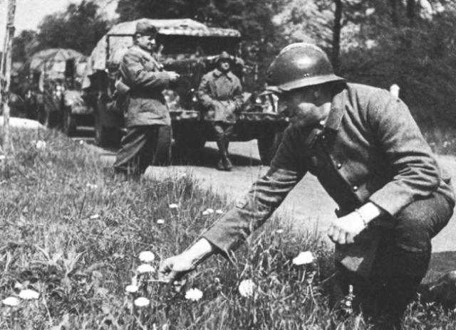 """"""" La drôle de guerre """" une période d'attente propice aux futurs victoires nazies"""