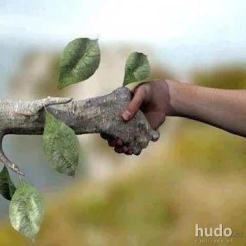 Se constituye el Club los amigos de la Naturaleza
