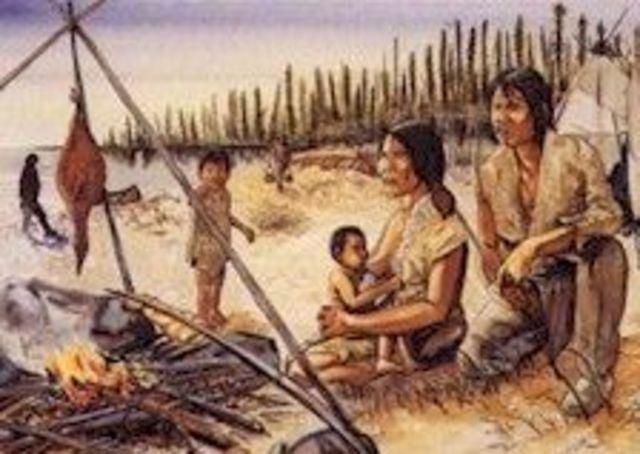 Iroquois and Algonquins