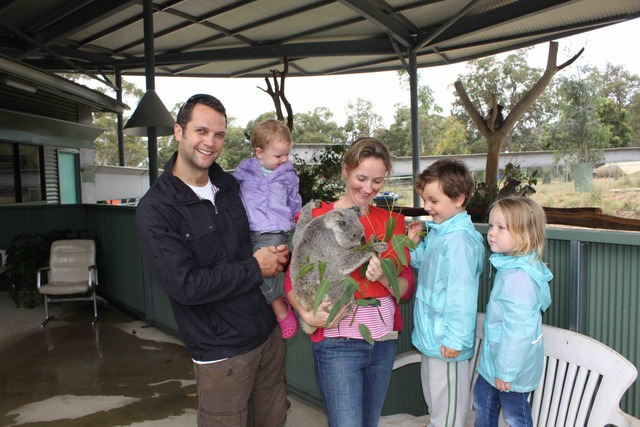 First time holding a Koala