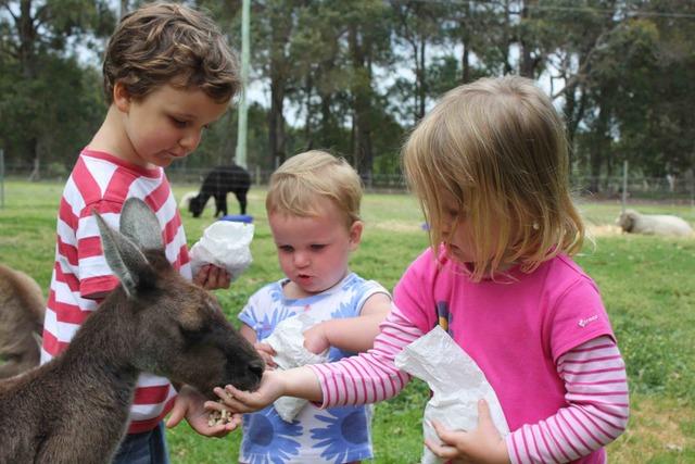 Redstay Farm, Margaret River, Australia