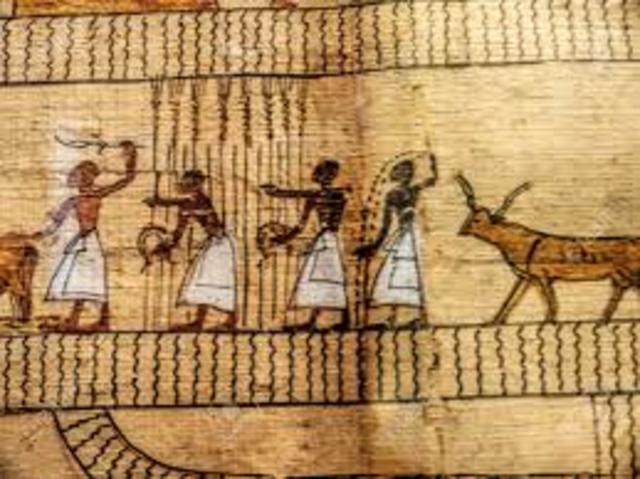 papiro egipto