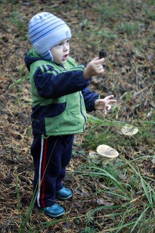 Мой первый поход за грибами