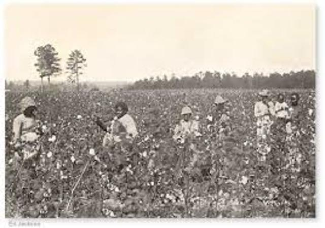 Sharecropping/ Teneant Farming