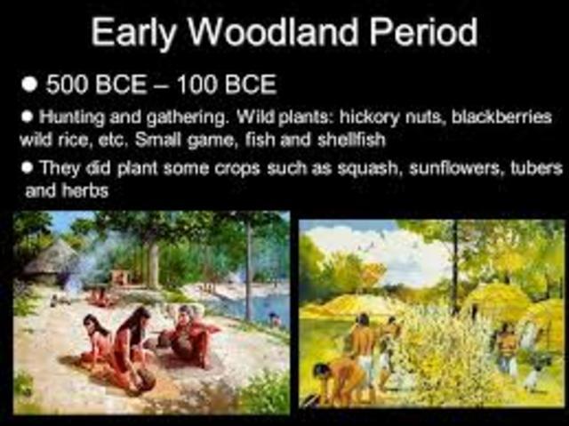 Woodland Period