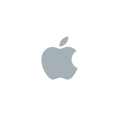 *Apple Inc. is Created