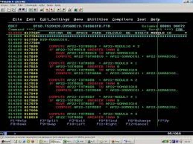 DESARROLLO DEL COBOL