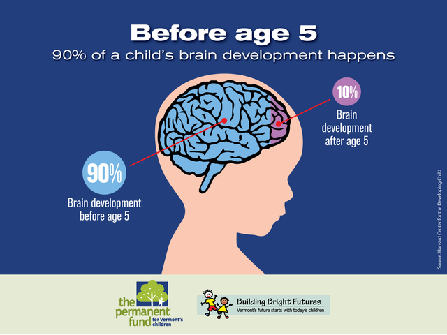 TODDLER - Brain Growth - physical/cognitive