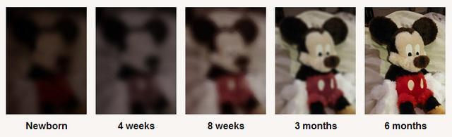 Infancy- Visual Perception Improvement (Physical)