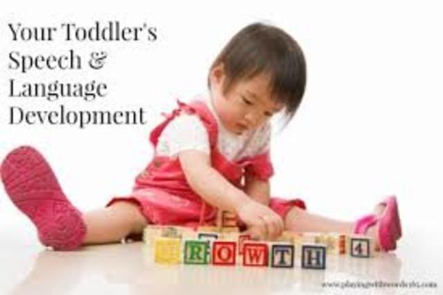 Toddlerhood- Rapid Language Growth (Cognitive)