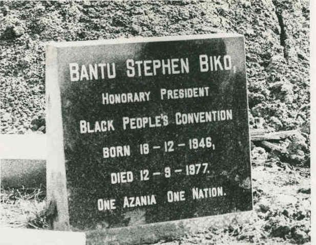 Steve Biko dies