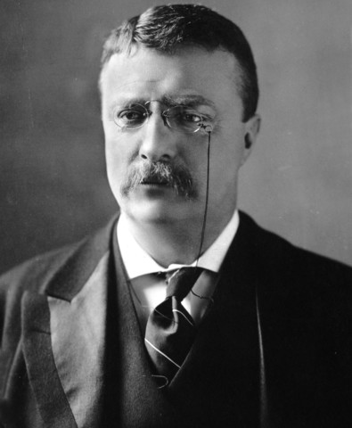Theodore Roosevelt is elected President