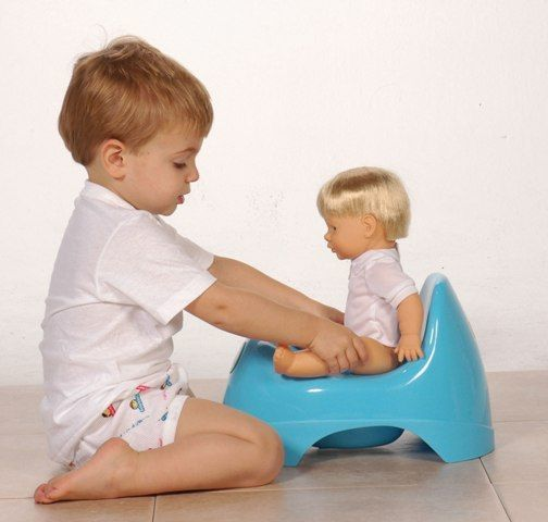 TODDLER - Potty Training - physical/cognitive/socioemotional