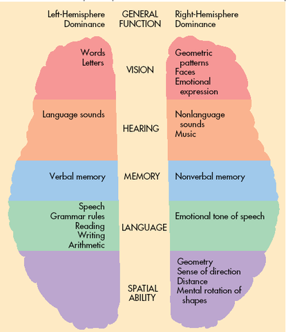 Early Years- Remarkable Brain Development (Physical)