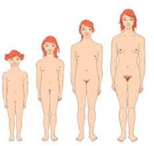 Desarrollo de la mujer 8 años