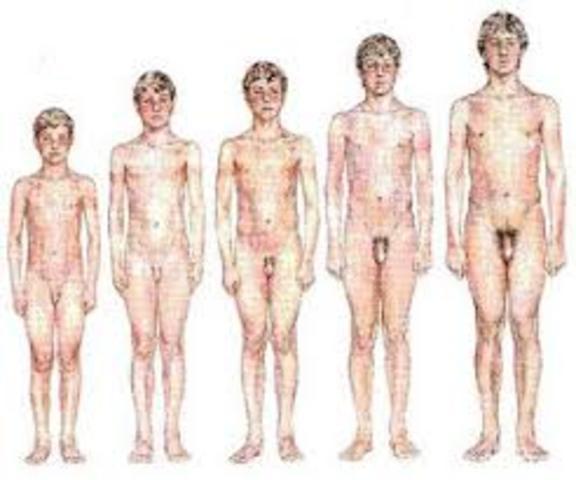 Cambios físicos en los hombres