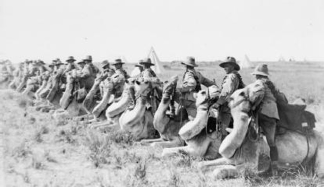Battle at Megiddo