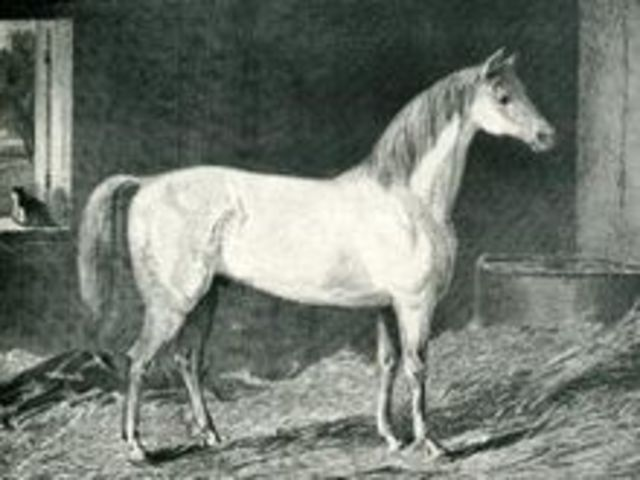 (BC era) Human messengers on horseback