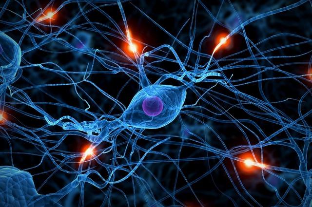 Neural Interactions