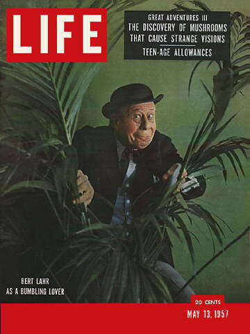 """The Tough Miracle Man of Vietnam"""