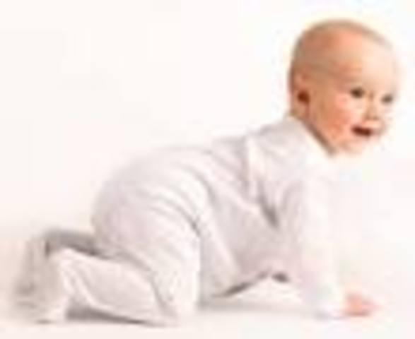 8 meses del bebe