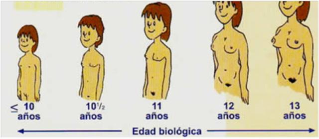 caracteristicas clinicas (en mujeres)