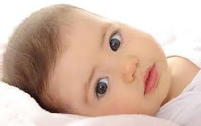 Desarollo del niño lactante