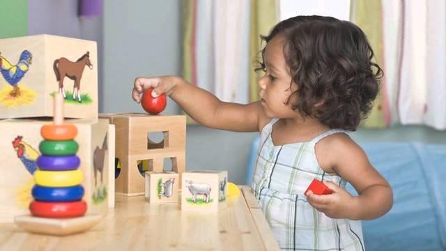 3 a 5 años (infancia temprana)