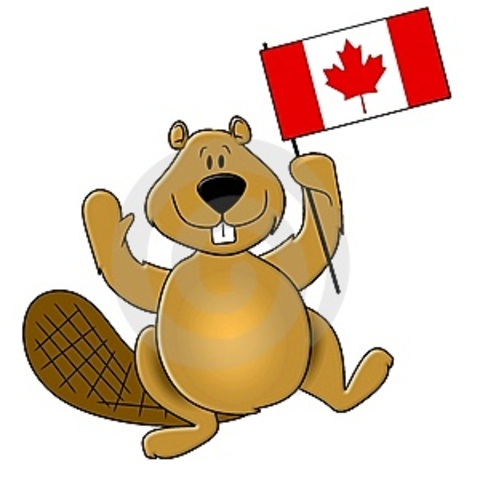 Beaver Becomes An Official Symbol