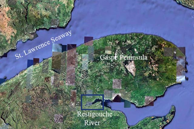 Battle of Restigouche