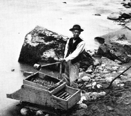 Immigration due to Fraser River gold rush