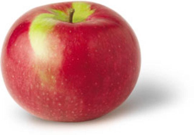 McIntosh apple discovered