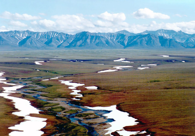 US House Prevents Drilling for Oil in the Arctic National Wildlife Refuge