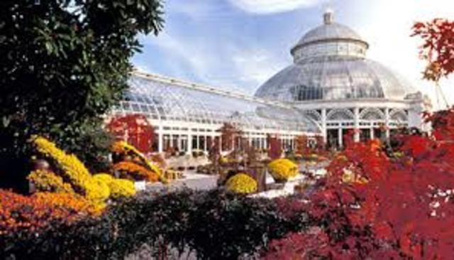Visitando el Jardín Botánico de Nueva York
