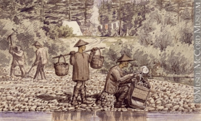 Gold is Discovered on the Fraser River - DE