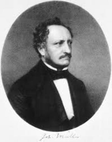 Müller, Johannes Peter