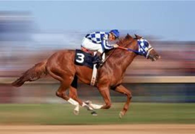 Secretariat at the Belmont Stakes