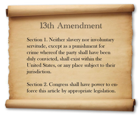 13th Amendment is submitted