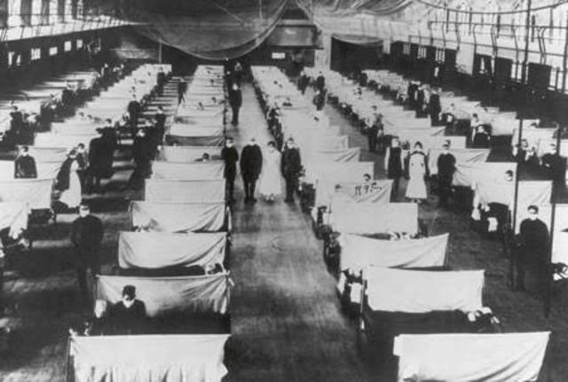 Influenza Epidemic