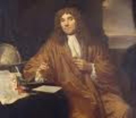 Anton van Leevwenhook
