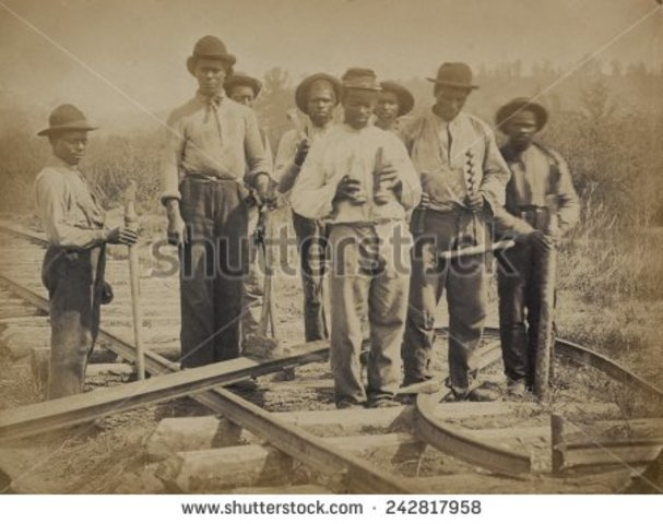Harriet First Labor