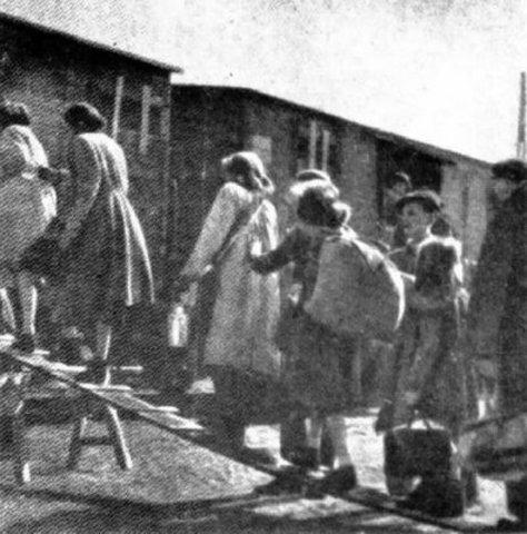 Evacuation of Auschwitz