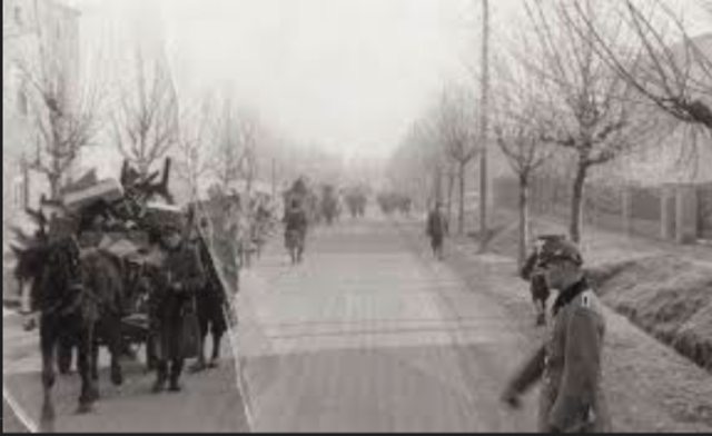 Remaining Jews  in Sosnowiec Transfered to Srodula