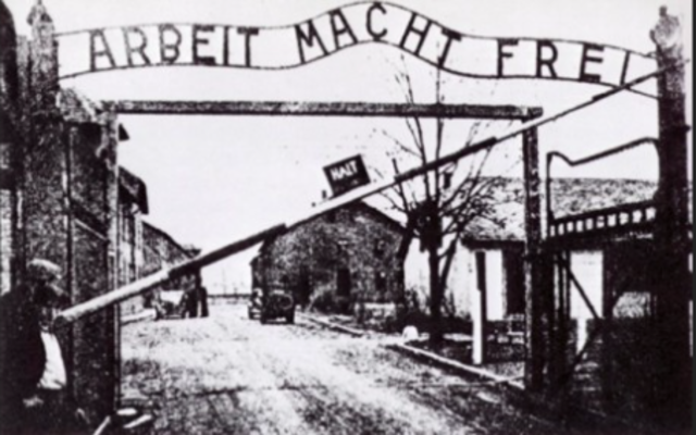 Sent to Auschwitz