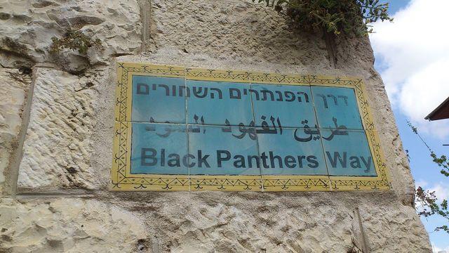 הפנתרים השחורים