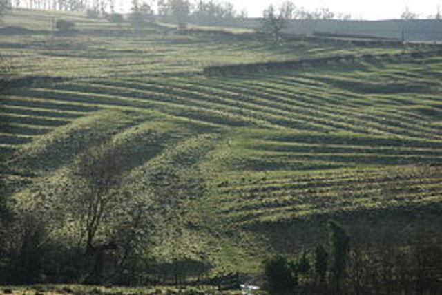 small farms cover England's landscape