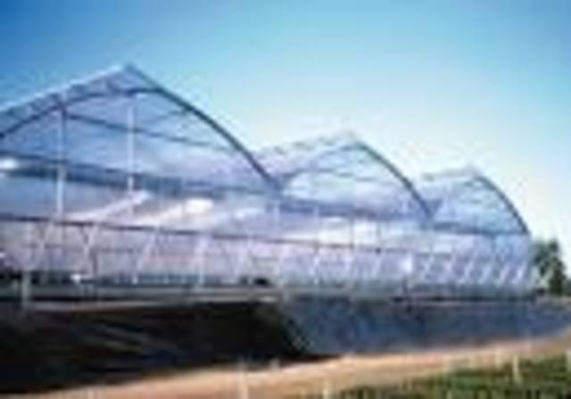 More and more greenhouses!